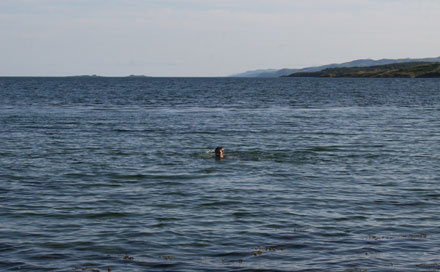 Swimming at Loch Melfort