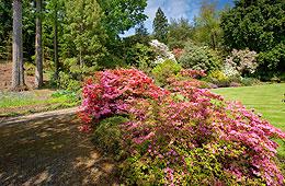Arduaine Garden next to Loch Melfort Hotel