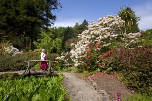 Arduaine Garden adjacent to Loch Melfort Hotel