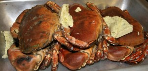 Fresh crabs landed locally near Loch Melfort Hotel