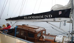 Royal Racing Yacht Bloodhound